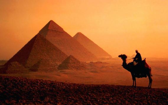 dusk-camel-pyramids-cairo-egypt-wallpaper-1800x2880